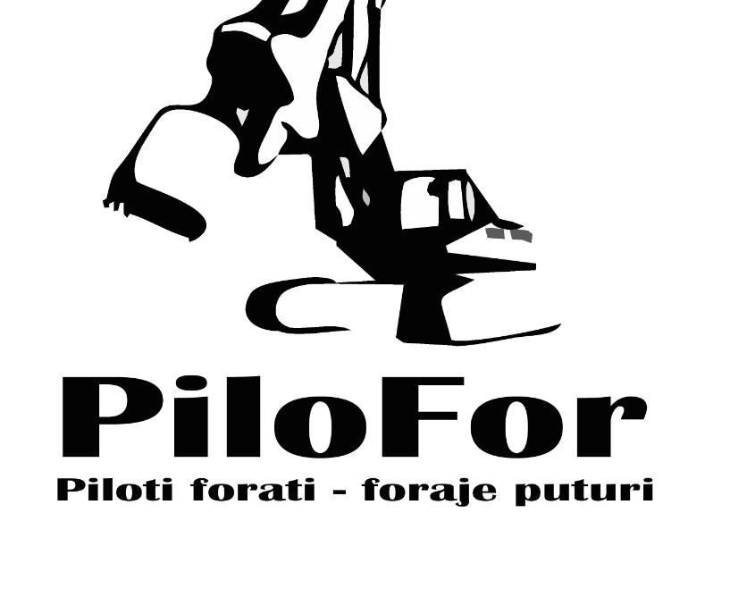 firma foraje piloti